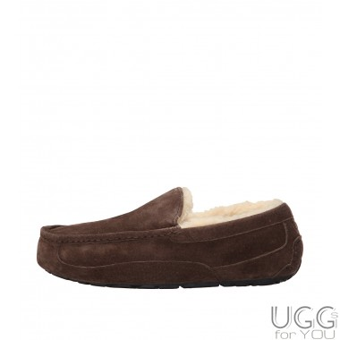 UGG Australia Ascot Slippers Chocolate